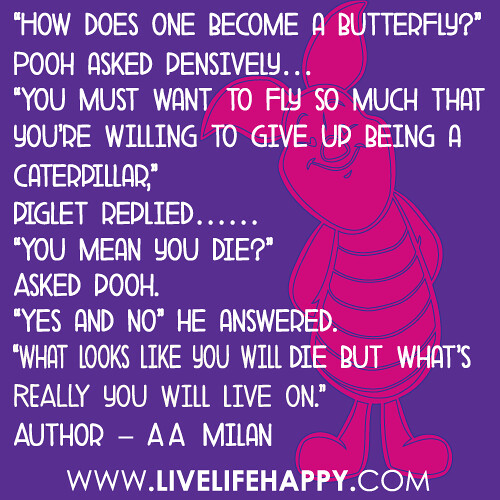 How Does One Become A Butterfly How Does One Become A