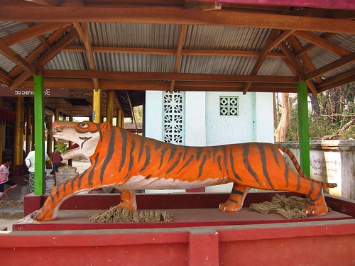 Long Tiger is Long | by fabulousfabs