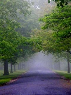 Misty and Mysterious Road | by Stanley Zimny (Thank You for 27 Million views)
