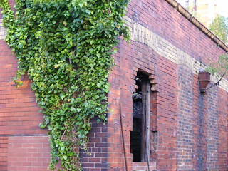 Butts Mill & Ivy | by fisher22mark
