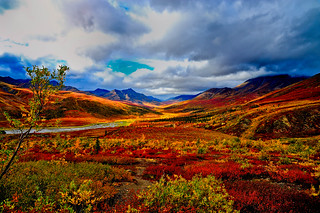 Yukon inian summer | by ralky