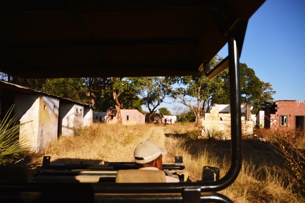 safari30