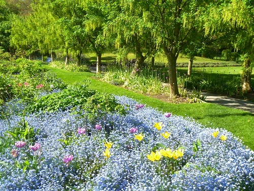 Spring, Cottage Bed & Tulips, Forget-me-nots | by VanDusen Botanical Garden Official Photostream