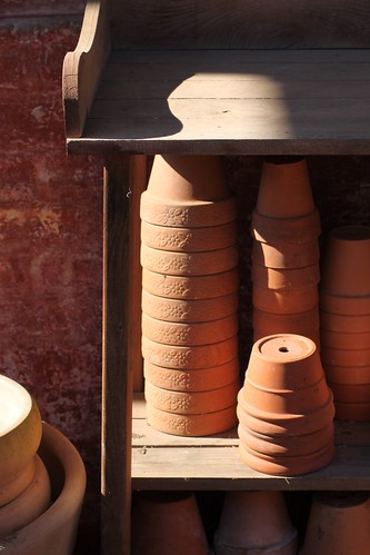 April 4/12 Terracotta plant pots | by Jude Doyland