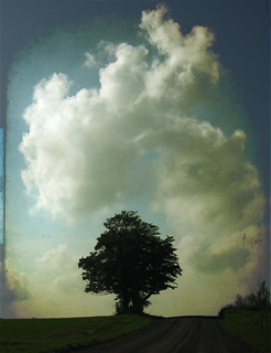 tree and cloud | by Ralpheyesee