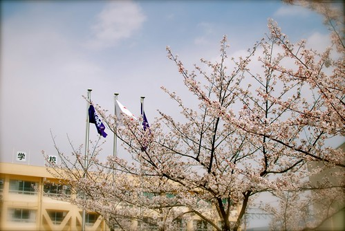 entrance ceremony in spring | by ugopapa
