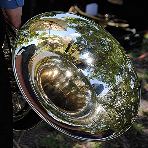 Music at Fairchild... Brass reflections | by jungle mama