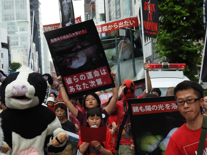 March to Close down all Slaughterhouse at TOKYO