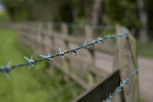A traditional fence HFF | by Deirdre Snook