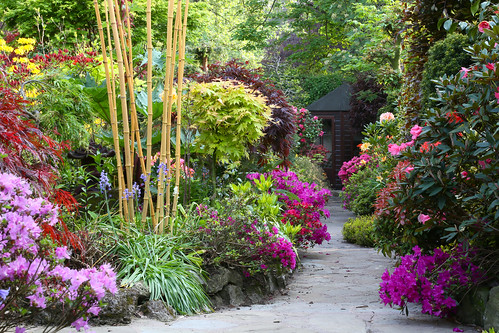 Path to lower garden in late spring may 23rd english for Gardening 4 all seasons