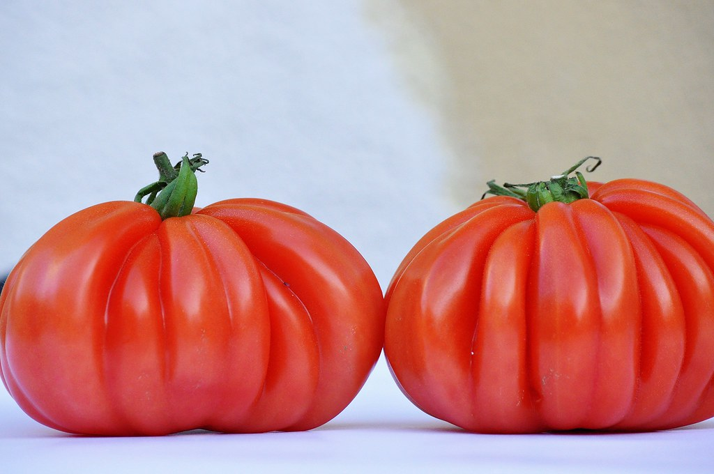 Resultado de imagen de tomate cor de bou