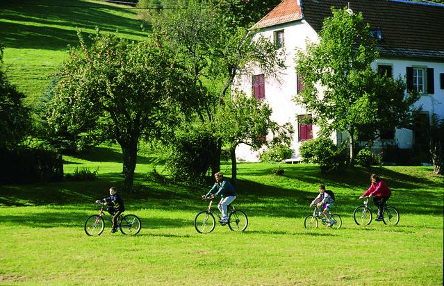 Paysages du Massif des Vosges