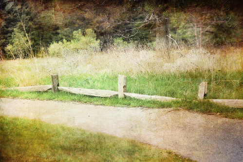Happy Fence Friday! | by Vicki Oseland (mostly away)