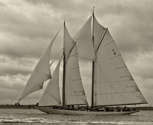 Westward Cup 2012, Cowes | by grahamwiffen