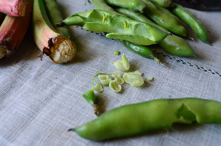 Saturday 26th - Broad Beans & Rhubarb - Lunch After The Market | by The Hungry Cyclist