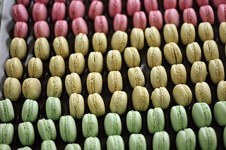 French macarons | by David Lebovitz