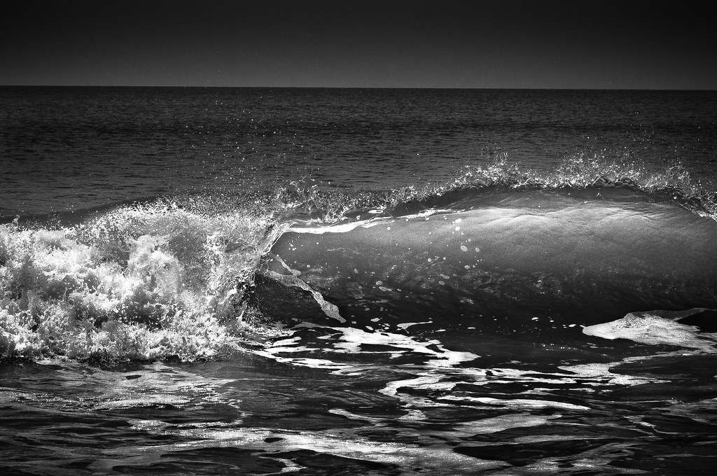 Little Talbot Island The Anatomy Of A Wave For A Hard Ch Flickr