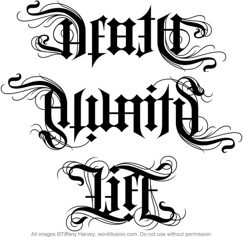 death awaits life ambigrams a custom ambigram of flickr. Black Bedroom Furniture Sets. Home Design Ideas