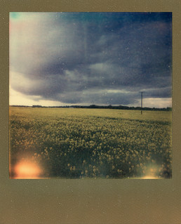 stormy spring in an instant v1 | by Dandy's Warden