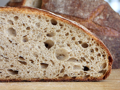 Tarlee Miche Crumb | by PiPs75