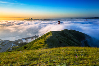 A Fluffy Morning in the Bay | by tobyharriman