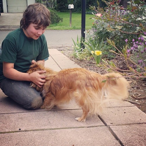 Boy and his dog #11yearold #sixthgrade #home | by SarabellaE / Sara / Love in the Suburbs