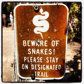 Rattlesnakes! (Cochiti Pueblo, NM) | by virtualDavis