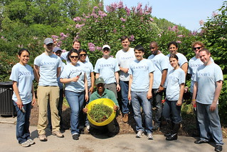 Moody's Volunteer Day | by Brooklyn Botanic Garden