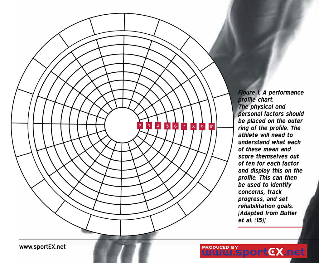 Ring Blank Chart: A performance profile chart. | sportEX journals | Flickr,Chart