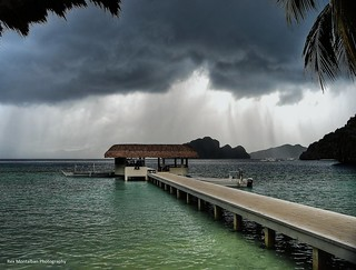 taking refuge from a storm | by Rex Montalban Photography