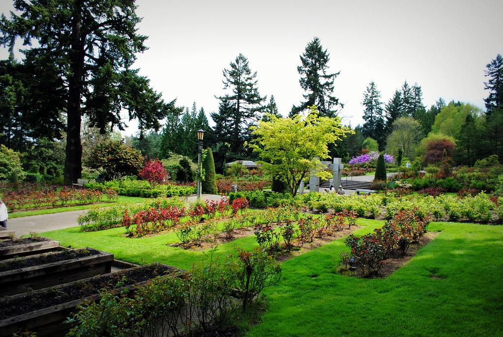 International Rose Test Garden - Washington Park - Portlan…   Flickr