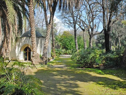 Le jardin botanique de palerme un espace du jardin for Le jardin 3d