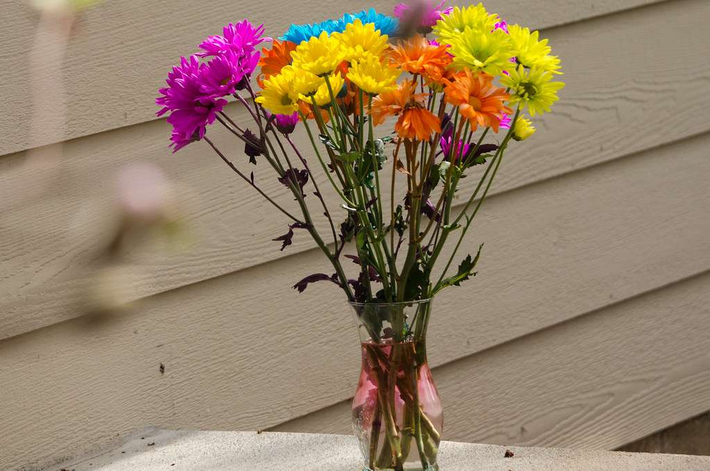 Neon Daisy Bouquet
