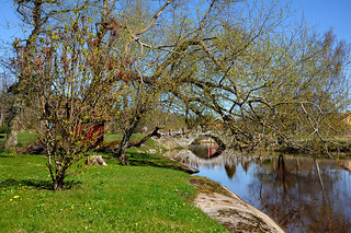 Stonebridge in springtime | by johdan1