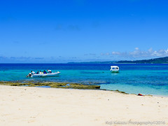 コマカ島-2016-06-19-91