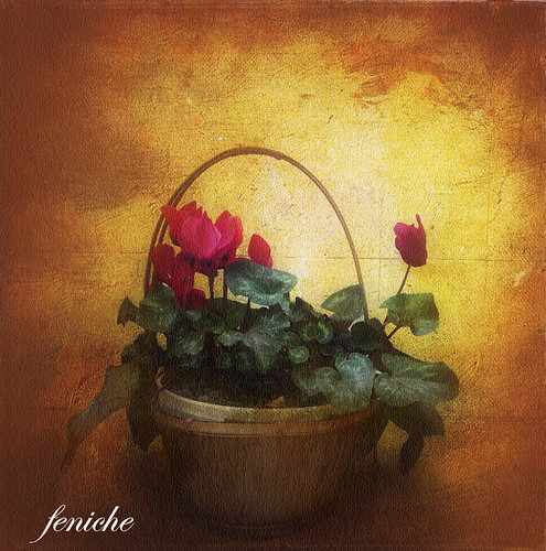 el cesto --basket of flowers | by feniche