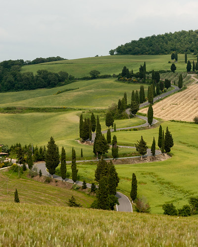 Tuscany, Italy, May 2012 | by George Bladon