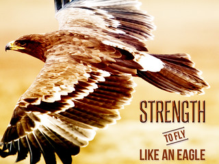 Strength to Fly Like An Eagle | by godserv