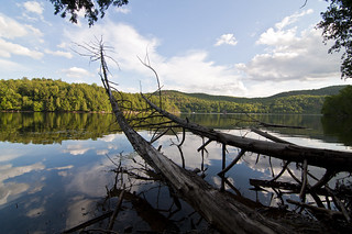 Meech Lake vignette 2 | by Barbara A. White