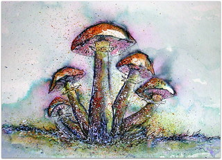 WHIMSICAL MUSHROOM COLONY | by Louise001