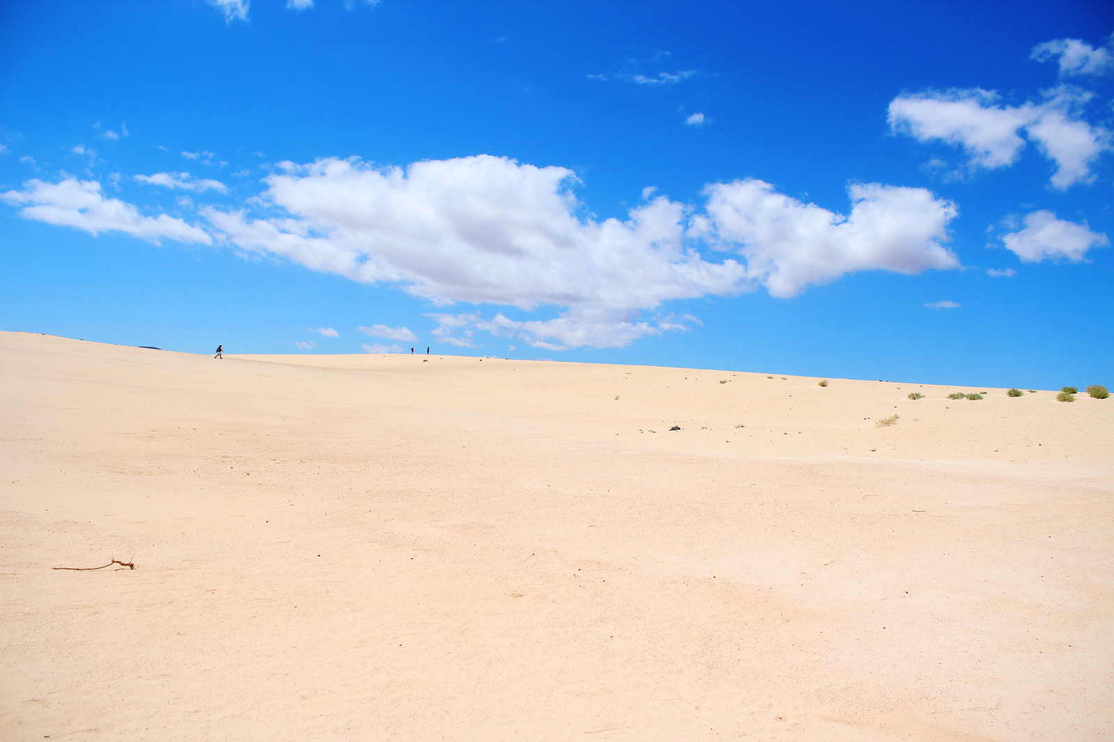 Fuerteventuras Dunas