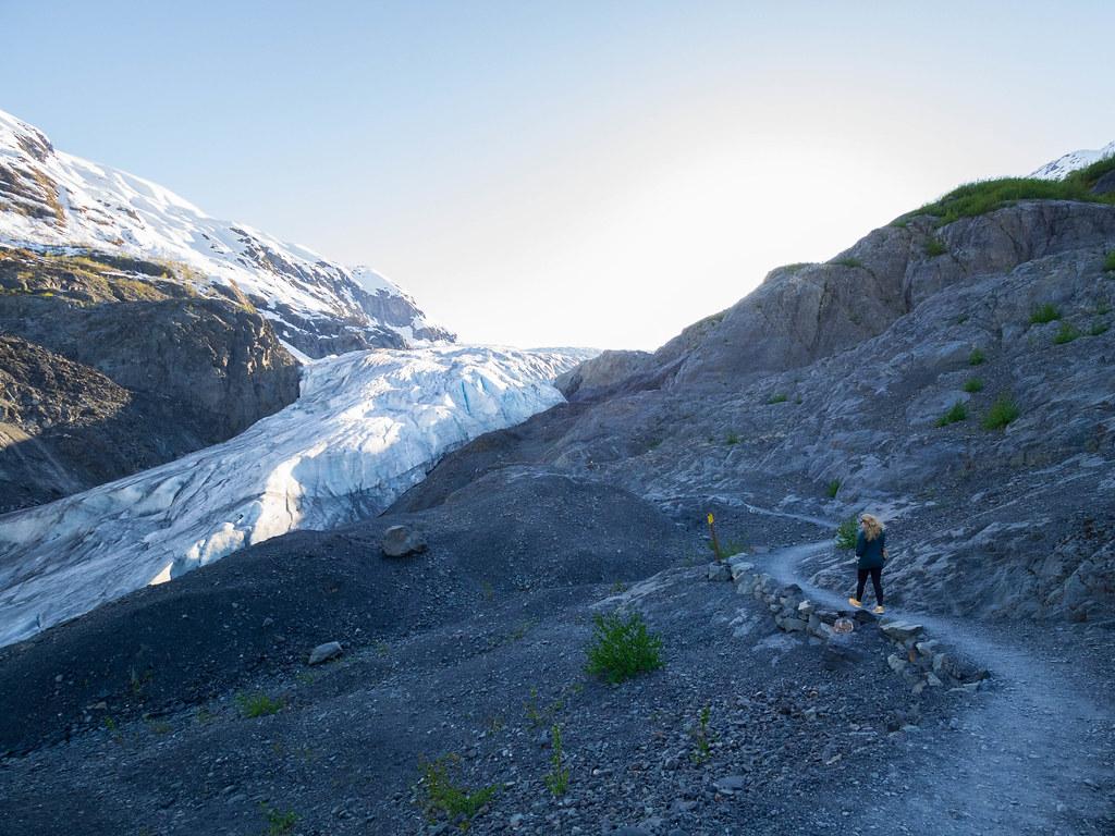 Exit Glacier-24