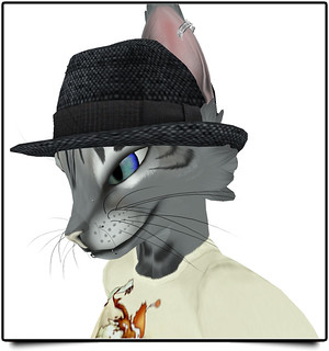 Ronsem Hat | by Vit =^・ェ・^=