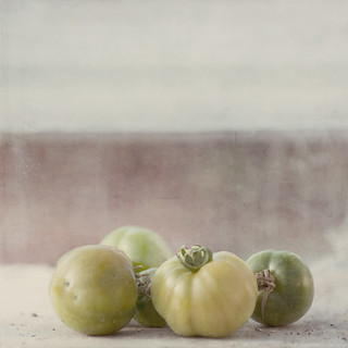 Tomatoes | by borealnz
