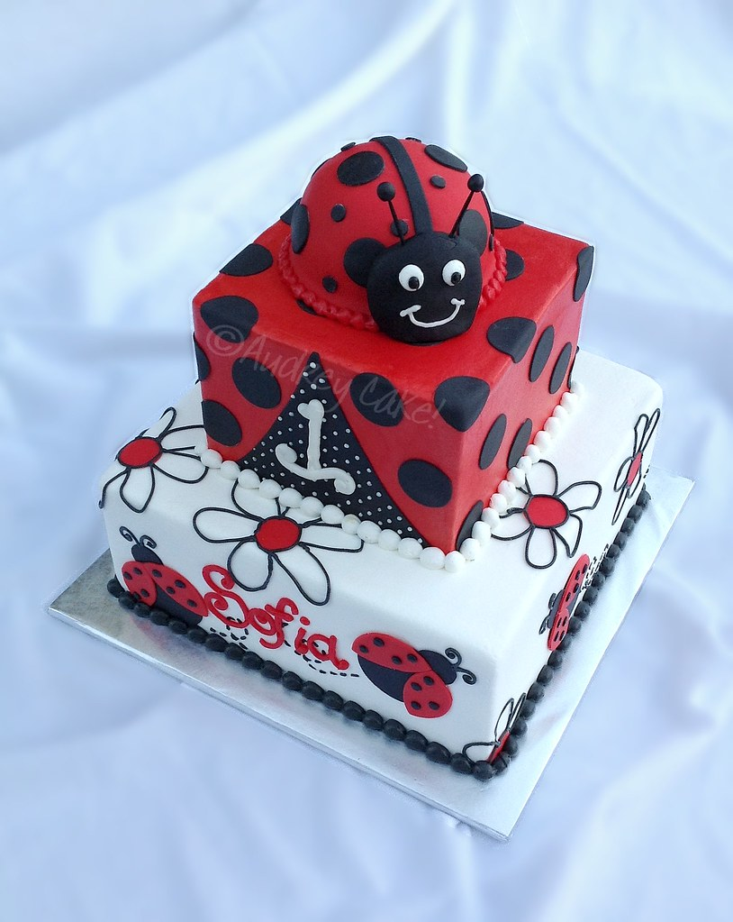 Ladybug 1st Birthday Cake What Little 1 Year Old Wouldnt Flickr