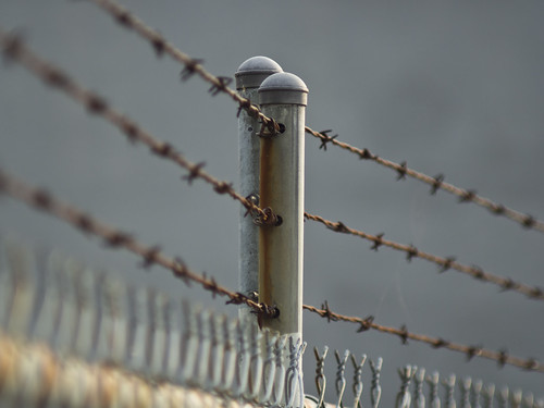 Barbed Wire | by My TVC 15