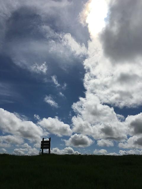 Osmundson Prairie SNA