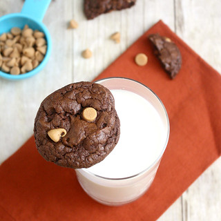 Double-Chocolate Peanut Butter Cookies | by Tracey's Culinary Adventures