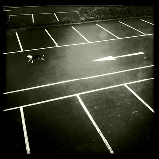 Dog and Car Park, Lewisham, July 2012 | by Michael Sissons
