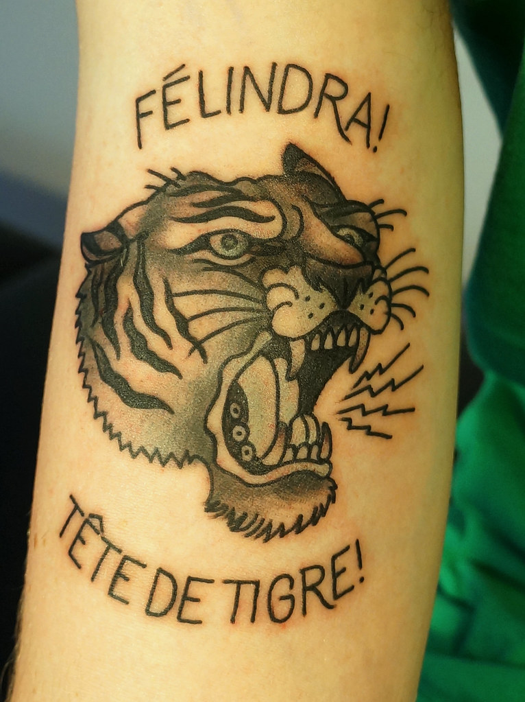 Félindra Tête De Tigre Molaire Blogspot Com Cecilepages Flickr